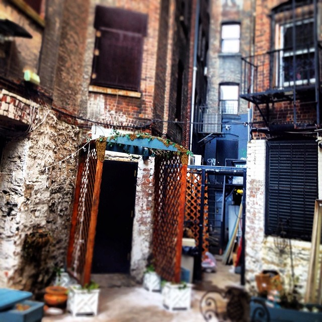 Backyard of the Chipped Cup in Harlem, which will be among Vehlinggo's handful of spring and summer offices. Photo Credit: Vehlinggo.